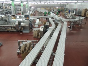 Flexible Aluminum Slat chain system